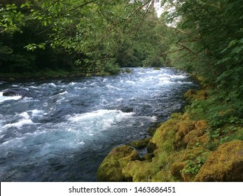 Clear Blue water of the McKenzie River