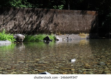 Clear clean water flowing past a concrete wall. Nature versus man. Man made items in the forest