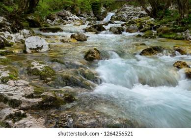 Clear cold alpine Lepenica river in Spring at Sunikov Vodni Gaj Nature Preserve in Triglav National Park Julian Alps Lepena Valley Slovenia - Shutterstock ID 1264256521