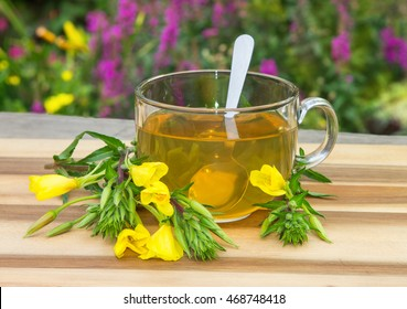 Clear cup of herbal tea from evening primrose used in naturopathie against female disorders.