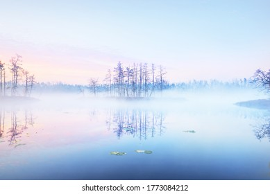 Сrystal clear lake (bog) in a fog at sunrise. Symmetry reflections on the water, natural mirror, dark tree silhouettes. Epic cloudscape. Idyllic autumn scene. Concept art, fantasy, fairy tale