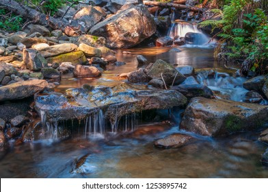 Clear mountain creek deep in the forest. Carpathian mountains, Ukraine