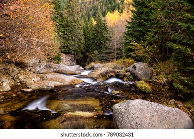 Clear mountain creek in the mountains of Romania during autumn foliage