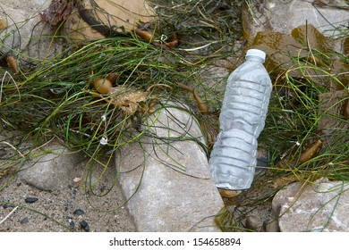 Clear plastic water bottle sitting among rocks and seaweed on the shore.