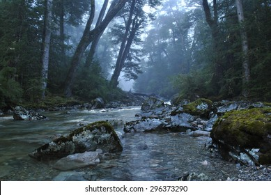 Clear river runs through dark forest in mystic landscape scenery