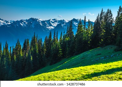 Clear Skies Over Mountains in Olympic National Park, Washington