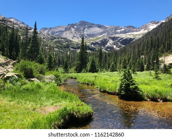 Clear stream running through bright green meadow in the Rocky Mountains