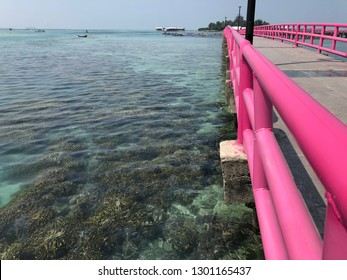 Clear underwater beach along the pink bridge in Tidung Island, Thousand Island, Jakarta Indonesia