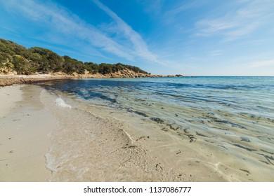 Clear water in beautiful Cala Pira, Villasimius. Sardinia, Italy