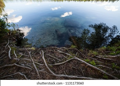 Clear water lake in Finland at summer