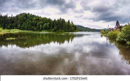 Clear water mirroring the forest under a cloudy sky in the Colibita valley. Carpathian Mountains of Romania.