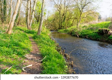Clear water of the River Lean flows through woodland beside a narrrow footparh.