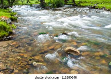 Clear water in the roar