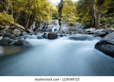 Clear waterfall with yellow foliage