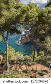 Clear waters of a beautiful Mediterranean rock coast bay in Palafrugell, Catalonia, Spain