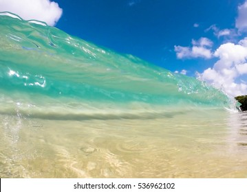 Clear wave in Tropic