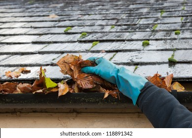Clearing autumn gutter blocked with leaves by hand
