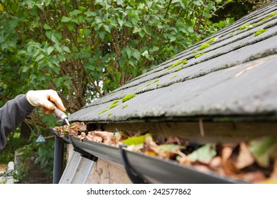 clearing blocked gutter of autumn leaves with trowel