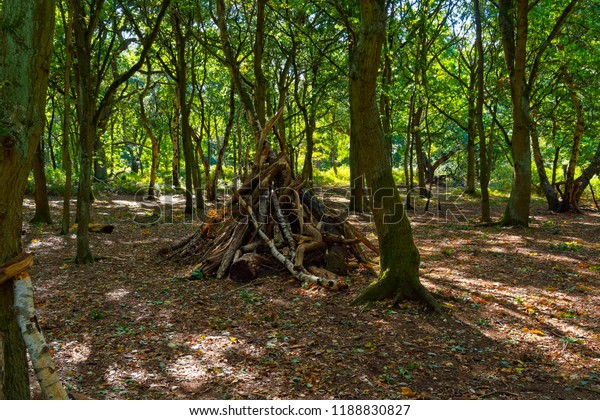 In a clearing in Sherwood Forest is a den or hideout made of old fallen branches from Silver Birch and Oak trees.