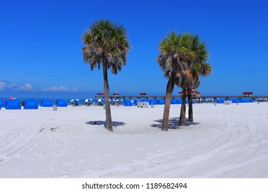 Clearwater Beach, Tampa, FL, USA. The leisure and vacation, white sand, palm, umbrellas, cabanas and the famous pier 60 at the bottom, voted the number one beach in United State