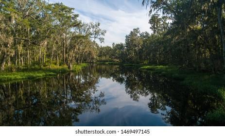 """Clermont, FL / USA - 7-23-2019: Scenic photo of the Palatlakaha River."""