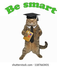 """The clever cat in a academic hat holds a book """" ABC """". Be smart."""