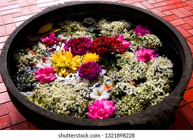Clicked this top view of variety of different flowers kept in a bucket filled with water at Chikamagalur, Karnataka.