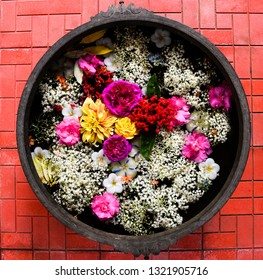 Clicked this top view of variety of different flowers kept in a bucket filled with water at Chikmagalur, Karnataka.
