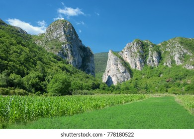 cliff and cultivated field near Vlasi village, Serbia - Shutterstock ID 778180522