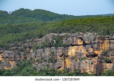 Cliff face with trees