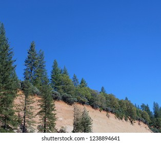 Cliff lined with pine trees.