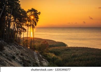 Cliff on the Vistula spit near Krynica Morska, Pomorskie, Poland