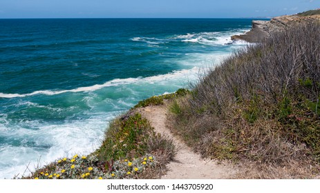 Cliff top coastal pathway and flora, with view of the Atlantic ocean on a sunny summer day. Taken in Praia das Maçãs, Portugal.