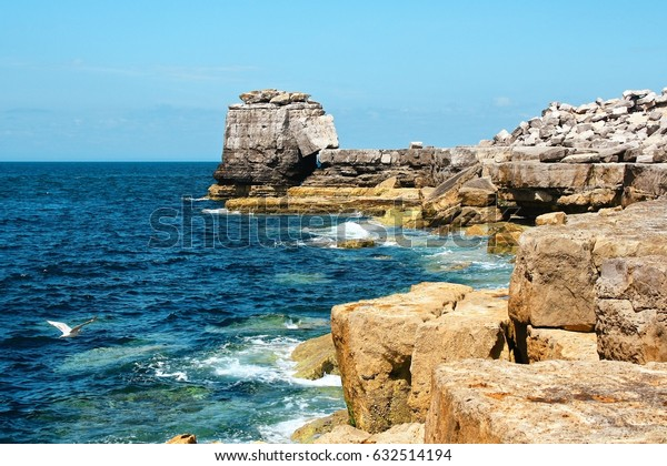 Cliffs at the coastline of England. Seagull over water. Blue water and clear sky. Abstract seascape.
