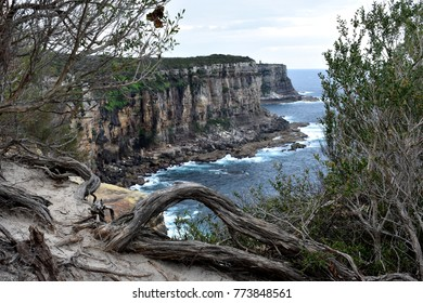 Cliffs at Manly North Head, Sydney, Australia