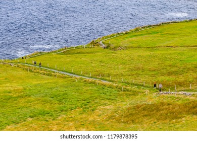 Cliffs of Moher trail with farm fields and ocean, Doolin, Clare, Ireland