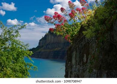 Cliffs at Shanklin