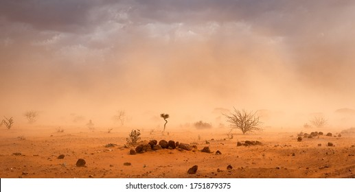 Climate change in Africa: dramatic dusty sandstorm blowing sand and dirt through savanna, disrupting life in Melkadida refugee camp , Dollo Ado, Somalia region, Ethiopia, Horn of Africa