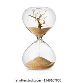 Climate change awareness concept with a dead tree turning in to sand in a hourglass