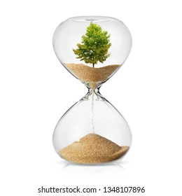 Climate change awareness concept with a tree turning in to sand in a hourglass