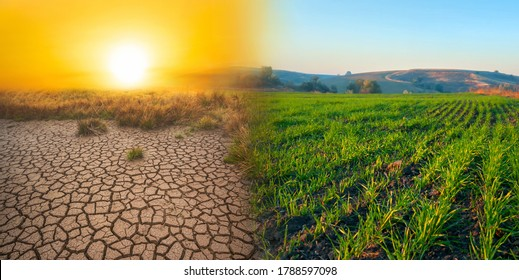 Climate change concept, desert invasion. Double exposure with desert and cultivated field.