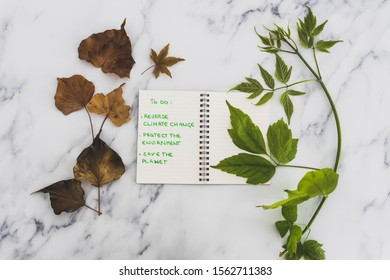 climate change and solutions to global warming conceptual still-life, green branch next to dry leaves with To Do list to save the environment among them