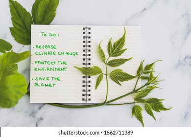 climate change and solutions to global warming conceptual still-life, To Do list to save the environment and green branch with lush leaves growing around it