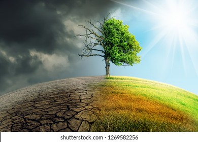 climate change withered earth - Shutterstock ID 1269582256