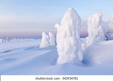Climatic changes on the planet. Heavy snowfalls and trees which are stuck round by snow. Phenomenon of global warming.