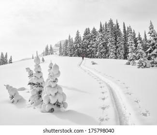Climb in fresh snow along a ridge in the Teton's.  A quiet winter scene.