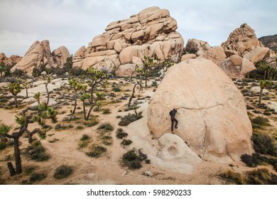 Climber in a desert landscape in Joshua Tree National Park, USA