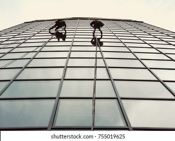 Climbers on office building/Pair of climbers washing the windows hanging by their ropes on the glass wall of a tall modern office building.
