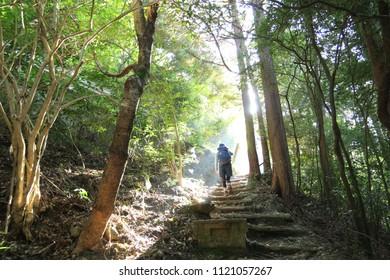 Climbing path of sunbeams through the sun