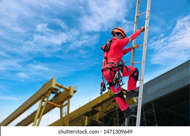 Climbing the risks of a worker by Ladder to work on the roof of factory on the beautiful sunny day wearing equipment protective safety harness for safety concept